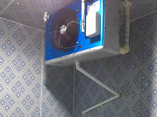 cold room.jpg