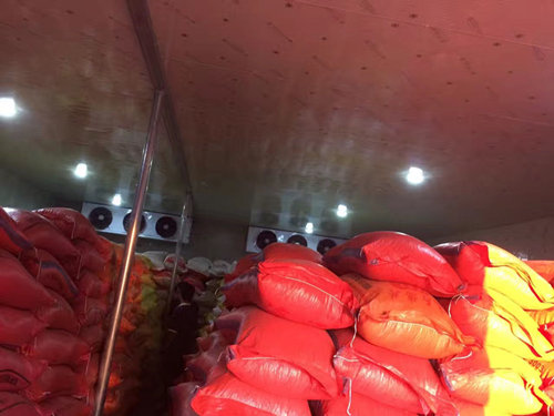 Peanut cold storage.jpg
