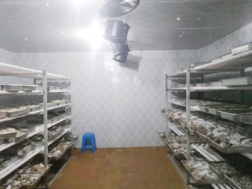 seafood cold storage.jpg