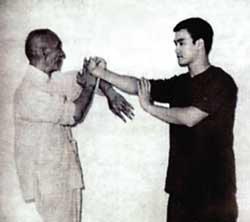 Wing Chun photo